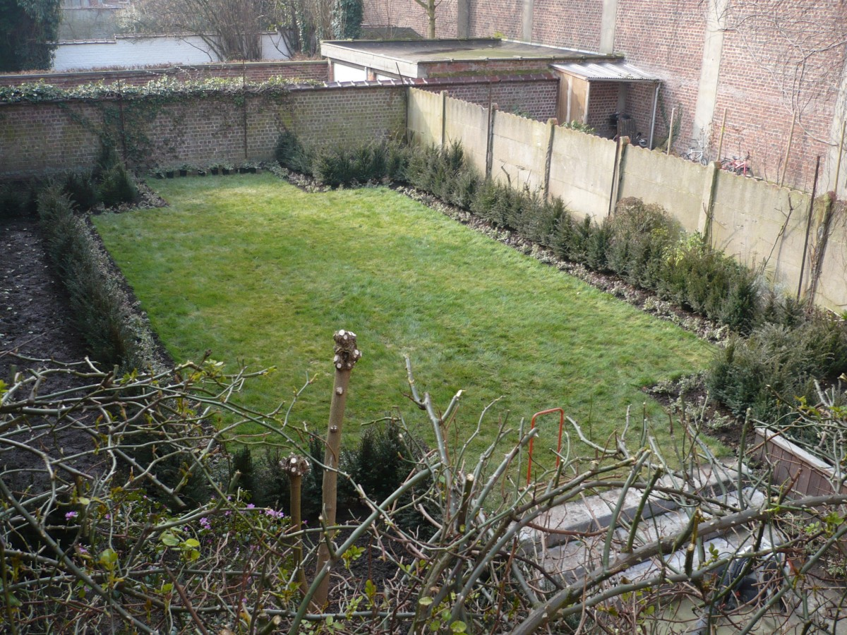 Am nagement jardin de ville walgreen for Amenagement jardin ville